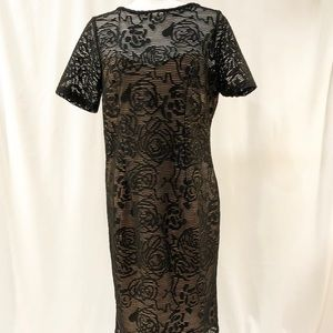 NWT Adrianna Papell Black lined Lace Dress.